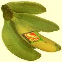 Banafair Bananen