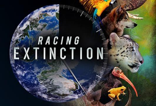 Grafik: Erdekugel, durch Uhrzeiger schon zu zwei Drittel abgelaufen, rechte Seite Köpfe verschiedener Wildtiere